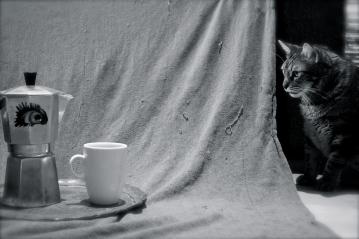 EYE COFFEE, part III